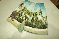 SURFS UP! ~ BOYS T REX DINOSAUR THEME SWIM BEACH SURF SHORTS ~ AGE 8 - 9 YRS