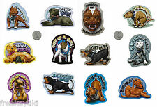 Hood Hounds Series 2 Full Set of 12 Stickers Prism Decals Lot Bully Pitbull Rott