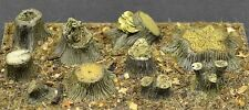 DioDump DD102 Tree stumps (11 pieces) resin diorama scenery accessories