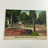 VINTAGE 1930s Mini Photographs Souvenir Pictures Savannah Azaleas Victory Dr.
