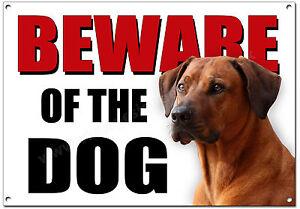 RHODESIAN RIDGEBACK BEWARE OF THE DOG METAL SIGN (A4 SIZE) SECURITY,GUARD DOG