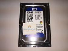 "Western Digital WD2500AAKX-00ERMA0 Caviar Blue 250GB 3.5"" SATA 7200RPM HD TESTED"