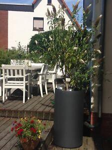 Blumentopf außen, rund, Stahl, ca 50x90 cm, rostend, Neuanfertigung