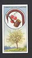 LAMBERT & BUTLER - BRITISH TREES & THEIR USES - #7 THE CHERRY