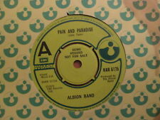 Albion Band – Pain And Paradise - UK Harvest 1979 DEMO