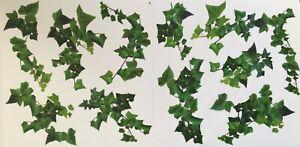 Wandsticker Wandtattoo Efeu Ranke Zweig Blätter Aufkleber