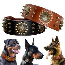Black Brown Genuine Leather Studded Dog Collar Medium Large Dog German Shepherd
