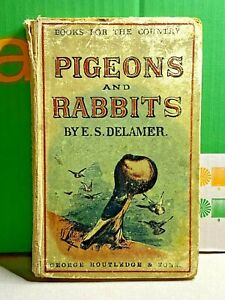 Pigeons and Rabbits by E.S. Delamer-1880-Books for the Country-George R. & Sons