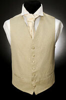 W - 530 BEIGE WITH BLACK MESH AND GOLD FORMAL WEDDING WAISTCOAT
