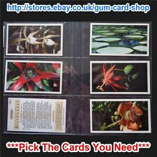 PLAYER'S - GRANDEE DISAPPEARING RAINFOREST 1991 (VG) *PLEASE SELECT CARD*