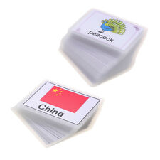Preschool Educational Flash Cards Kids Cognition Card Animal & National Flag