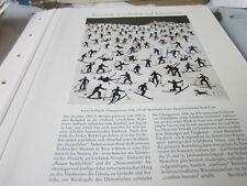 Oberösterreich Archiv 3 3037 FRanz Sedlacek Die Übungswiese 1926