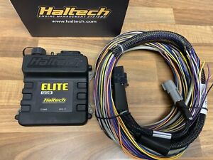 Haltech Elite 550 ECU + Basic Universal Wire in Loom Kit
