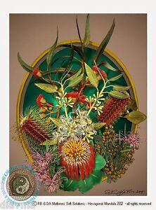 © ART - Exotic Wildflowers Australian Botanical Flower Artist print by Di