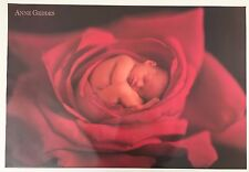 ANNE GEDDES, BABY IN A ROSE, AUTHENTIC OFFICIAL 2005 POSTER