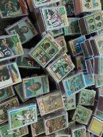 Lot of (50) 1970's Vintage Green Bay Packers Football Cards w/case