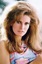 Raquel Welch photo gorgeous 11x17 Mini Poster