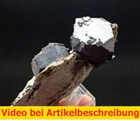 7401 Galenit Sphalerit ca 6*8*3 cm Mid Continent Mine Kansas USA MOVIE