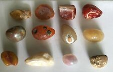 12 Unique Natural Australian Agates 171gr (Stone Inside Agate)