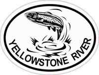 4x3 Oval Trout Yellowstone River Sticker Luggage Car Window Cup Fishing Stickers