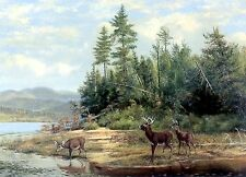 Deer On Lake~counted cross stitch pattern #1195~Animals Wildlife Nature Chart