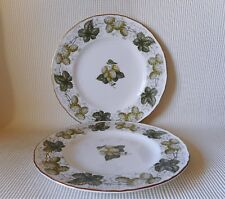 TWO ROYAL WORCESTER MATHON - THE WORCESTER HOP 205mm PLATES