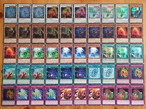 Yu-Gi-Oh! Steinbefreier Deck NEU DEUTSCH (Forscherin Drachit Löwonit Greifonit)
