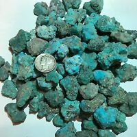 Kingman Arizona Turquoise Small Nuggets Rough - (1/2) Pound - Very Nice