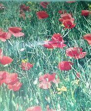 Red Corn Poppy Flower Seeds