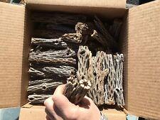 "Cholla Cactus Skeleton Wood 200+PCS 6"" ORGANIC NATURAL"
