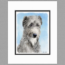 Scottish Deerhound Dog Original Art Print 8x10 Matted to 11x14