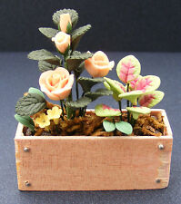 1:12 Scale Peach Roses In A Wood Window Box Dolls House Miniature Flower Garden