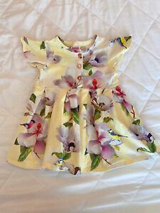 Girls Ted Baker Dress - 6-9 Months