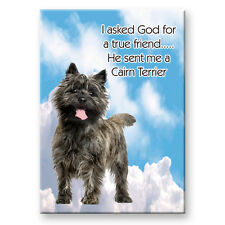 CAIRN TERRIER True Friend FRIDGE MAGNET No 1
