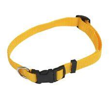 Nylon Dog Collar 21-28CM X 1cm Yellow