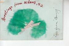 Green Feather Greetings from Albany NY