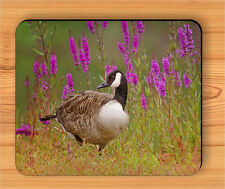 BIRD CANADA GOOSE BREED IN FLOWERED MEADOW MOUSE PAD -bhu5Z