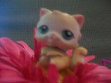 Littlest Pet Shop Persian Kitten Kitty Cat with Blue Eyes
