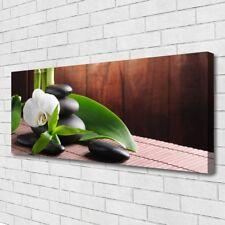 Leinwand-Bilder Wandbild Canvas Kunstdruck 125x50 Blumen Steine Blätter Pflanzen