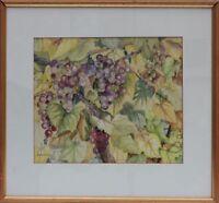 H.Wolcott - Weintrauben Aquarell