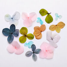 1 Bag Dried Flowers 3D Dry Hydrangea Flower Nail Art Decoration Beauty for Nails