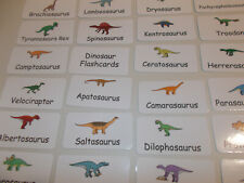 Dinosaur Flash Cards. Preschool Picture and Word flash cards.  Preschool science