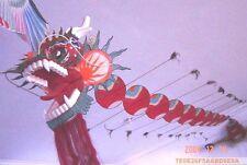 CLASSIC CHINESE HANDMADE BAMBOO KITE,HUGE DRAGON 40 feet EASY FLY