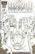 X-Files Conspiracy   TMNT  #1  Subscription Cover