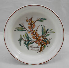 Villeroy & and Boch BOTANICA individual oven proof quiche / flan dish -Hippophae