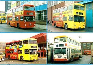 4 Leicester Bus Photos ~ Midland Fox: London Transport DMS Daimler Fleetlines