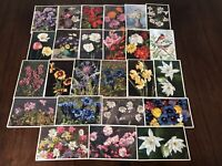 LOT of 25 SWISS FLORAL flowers~POSTCARDS BY THOR STEHLI-Mainzer-15 UNUSED-c894