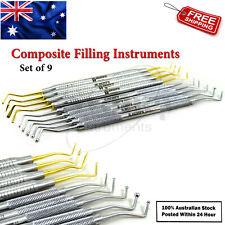 Dental Composite Flat Plastic Filling Instruments Restorative Ball Tip Burnisher