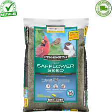 Pennington Select Safflower Seed, Wild Bird Feed and Seed 7 lb Bag Food & Treats