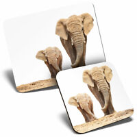 Mouse Mat & Coaster Set - Mother & Baby Elephant Cute  #2321